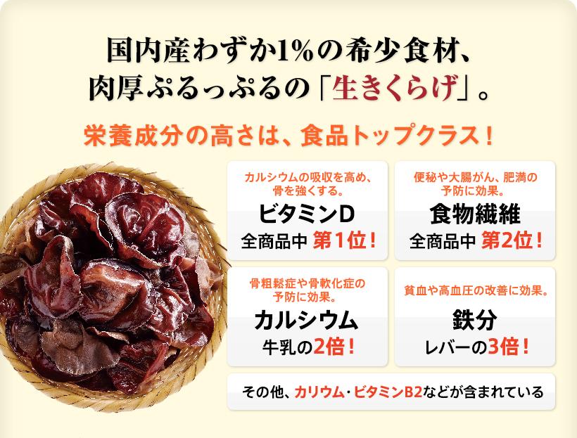 生きくらげ   【きらさん】宗屋株式会社 〜沖永良部島〜